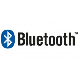 Sistema de sonido Bluetooth para bañeras de hidromasaje